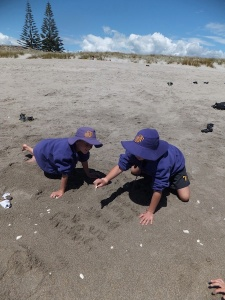 Beach poem 2