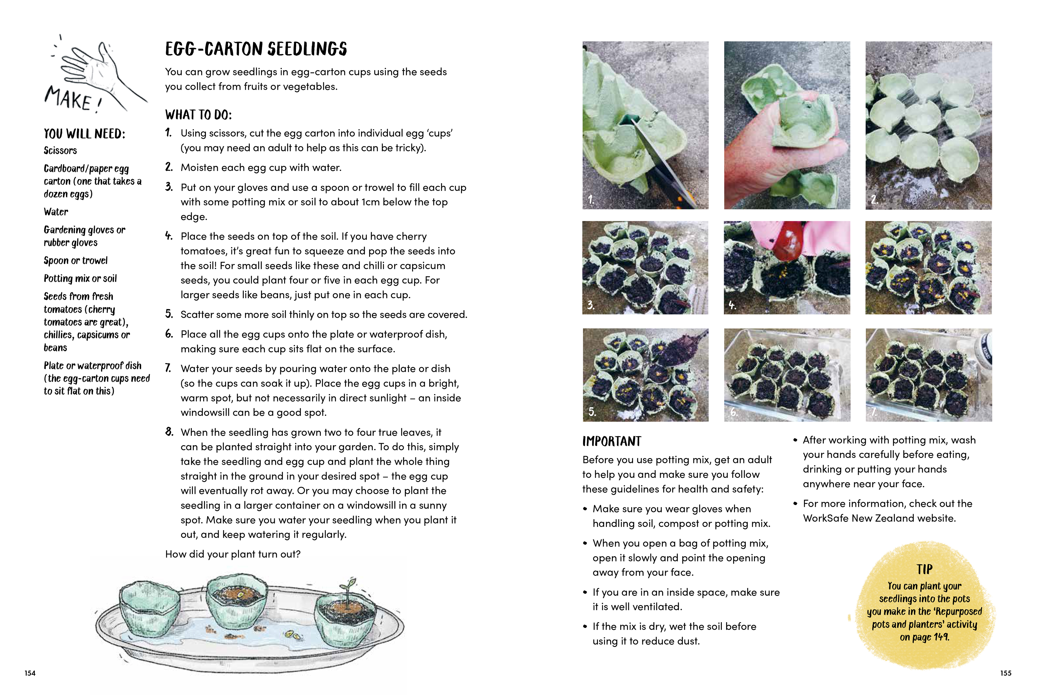 The Nature Activity Book_Egg carton seedlings.jpg